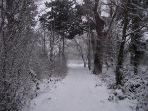 Path2small