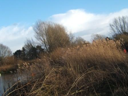 South Norwood Lakes Renaming 1-2-140164
