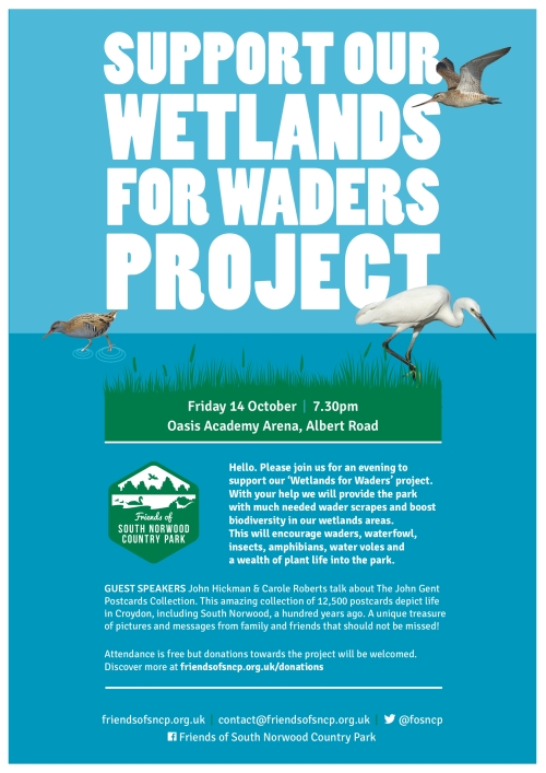wetland-wader-fundrasier